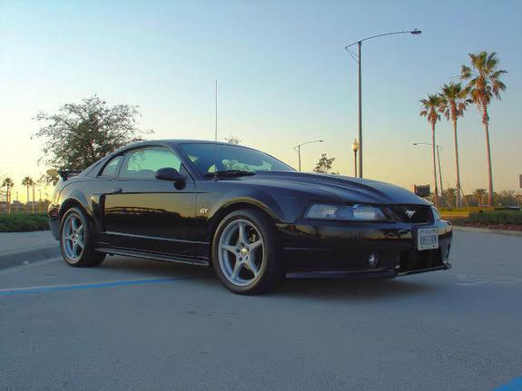 Another cmaglio 2000 Ford Mustang post... - 5770815