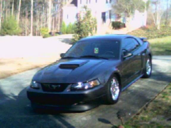 jayz2900 2003 Ford Mustang