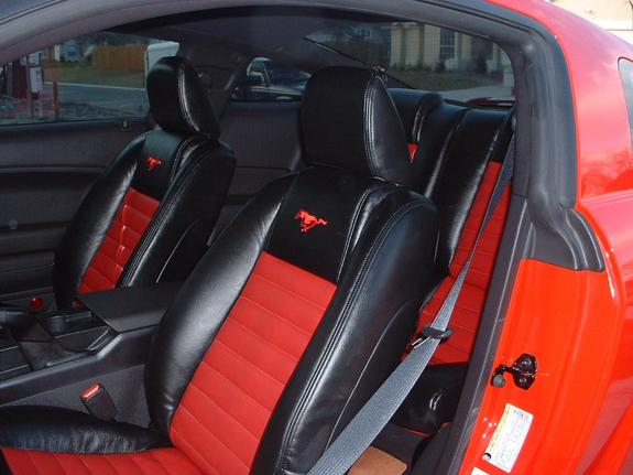Another rednblackdawg 2005 Ford Mustang post... - 5820305