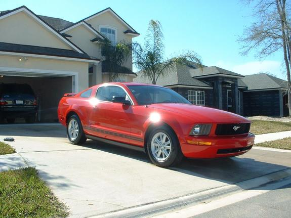Another rednblackdawg 2005 Ford Mustang post... - 5820306