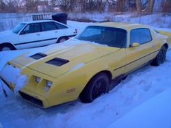 slarry2341s 1981 Pontiac Firebird