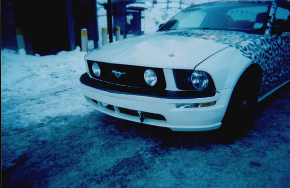 Another jeeprocks 2005 Ford Mustang post... - 5914282