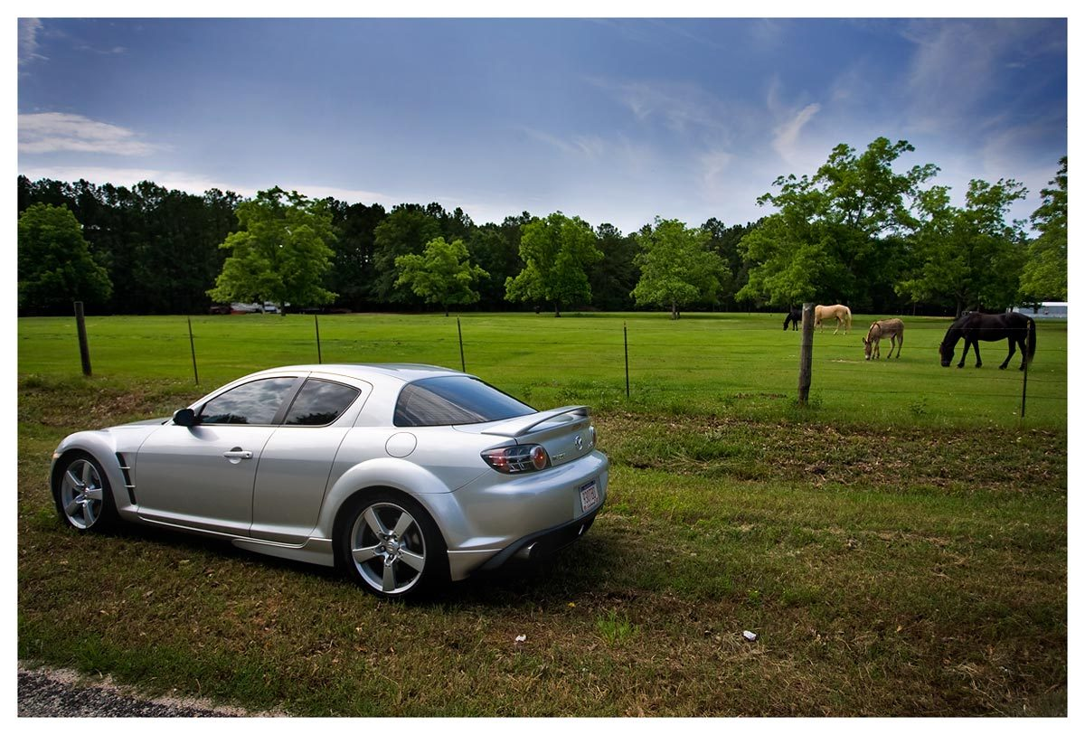 Another _dmp_ 2004 Mazda RX-8 post... - 5979160