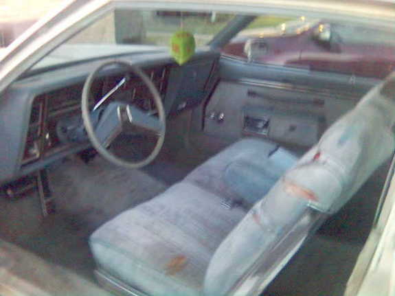 occupant 1979 Oldsmobile Delta 88 5993908