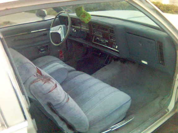 occupant 1979 Oldsmobile Delta 88 5993913