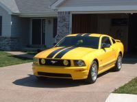 ponygirl05 2005 Ford Mustang