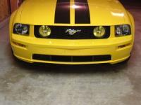 Another ponygirl05 2005 Ford Mustang post... - 6019254