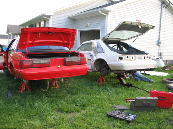 Cobra Im 1993 Ford Mustang Specs Photos Modification
