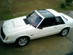 822205 1981 Ford Mustang