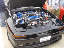 Luigipeppers 1989 Toyota Supra