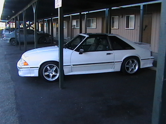 White88TTop's 1988 Ford Mustang