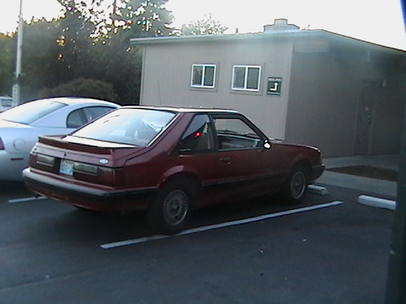 White88TTop 1988 Ford Mustang 6094942