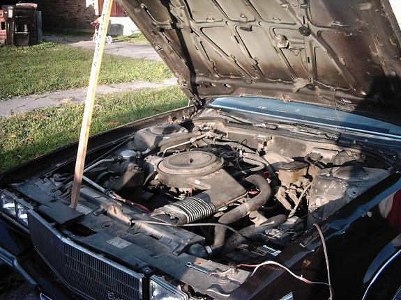 Another Coffee_Cream 1986 Cadillac DeVille post... - 6116068