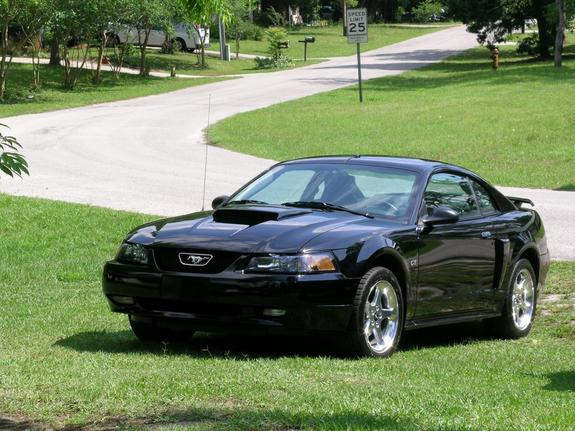 pete03gt 39 s 2003 ford mustang in orange city fl. Black Bedroom Furniture Sets. Home Design Ideas