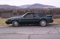 1983stanggt 1983 Ford Mustang