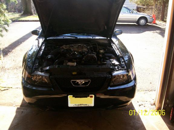 Another Stang7501 2000 Ford Mustang post... - 6236689