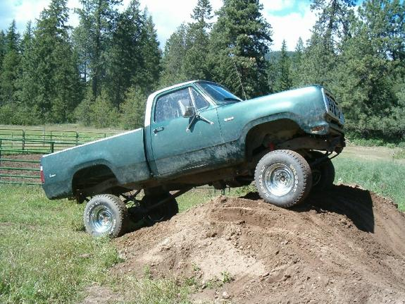 spittindurt 1976 Dodge W-Series Pickup 6243247