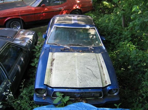 Another Stang2Man 1973 Ford Mustang post... - 118279