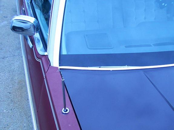 Another thedarkshadow 1983 Oldsmobile Delta 88 post... - 129961
