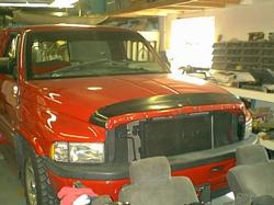 skinny96 1996 Dodge Ram 1500 Regular Cab