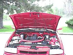 Twisted2Remains 1999 Chevrolet S10 Regular Cab