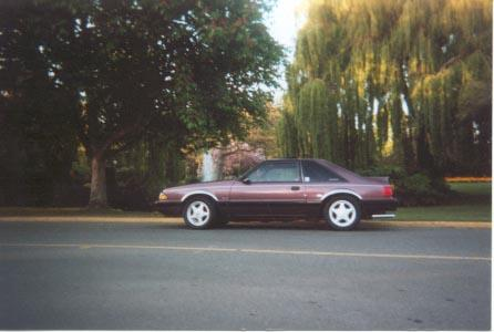 Another bumpinstang 1991 Ford Mustang post... - 18055