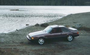 Another bumpinstang 1991 Ford Mustang post... - 18059