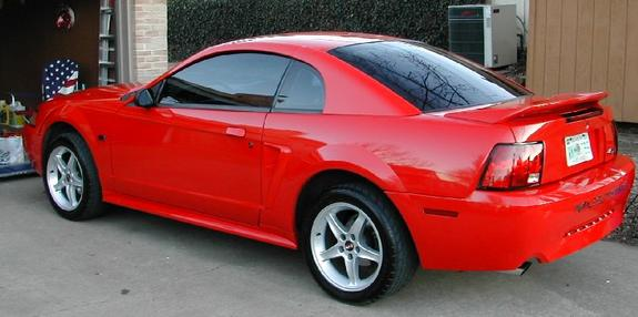 Another 2000stanggirl 2000 Ford Mustang post... - 347616