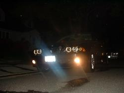 krazykidd786 2002 BMW 5 Series