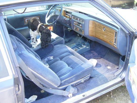 Another shavedmax 1989 Nissan Maxima post... - 368603
