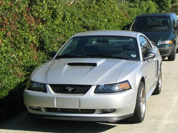 Another wms00004 2001 Ford Mustang post... - 7088047