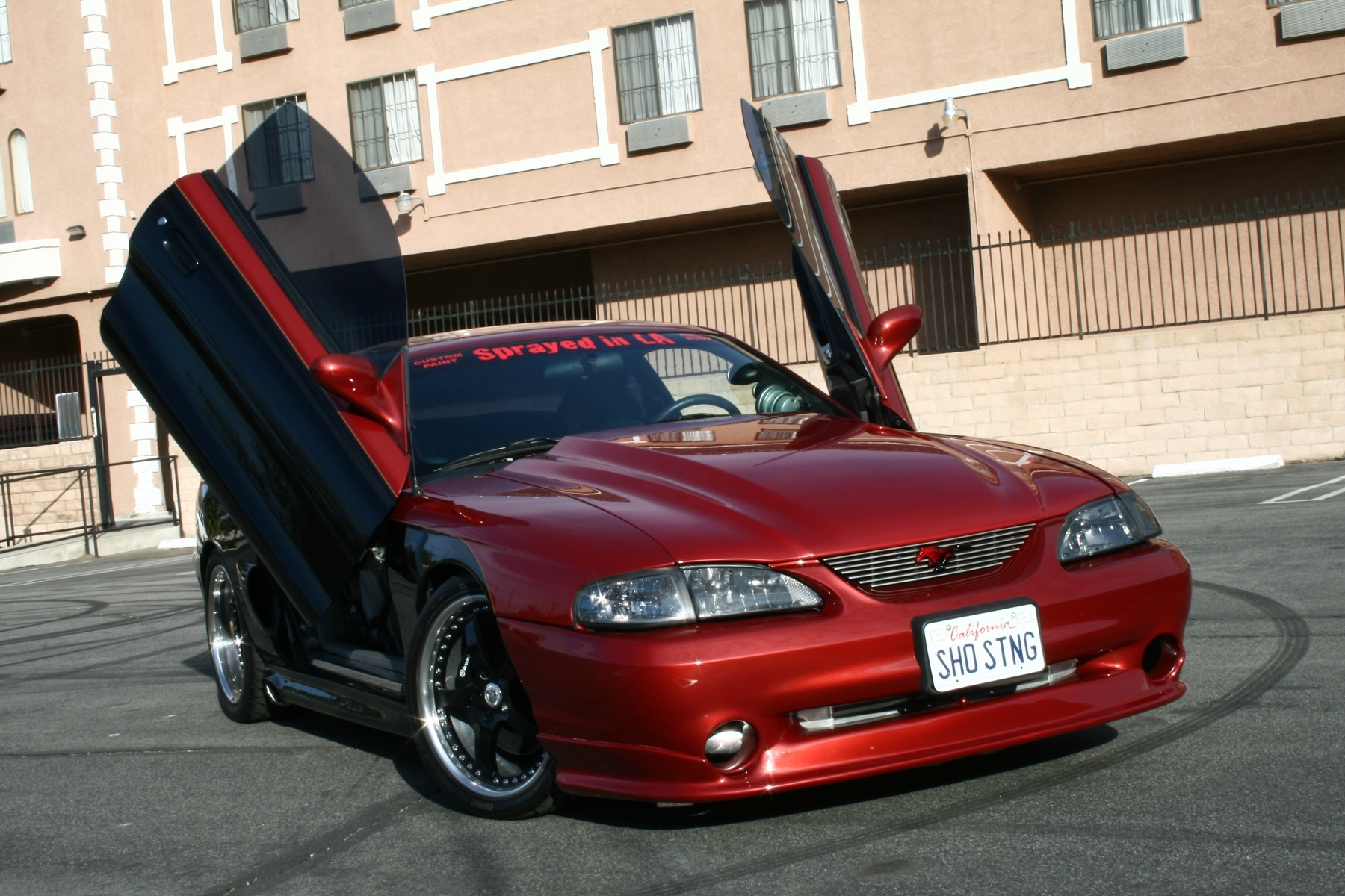eval95 1995 ford mustang specs photos modification info. Black Bedroom Furniture Sets. Home Design Ideas