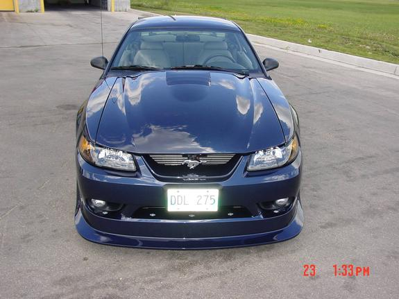 Another true_blue_cobrar 2001 Ford Mustang post... - 471372