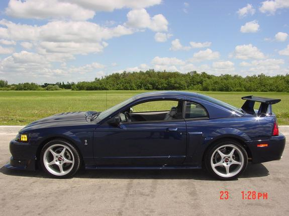 Another true_blue_cobrar 2001 Ford Mustang post... - 471373