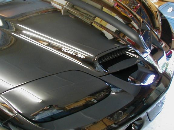Another freakynipples69 2000 Pontiac Trans Am post... - 496561