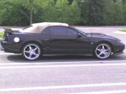 Rugam2cGTs 2001 Ford Mustang
