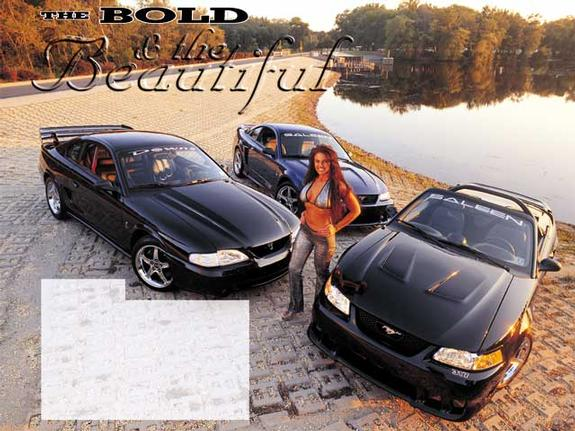 Another Sal33n 2000 Saleen Mustang post... - 560607