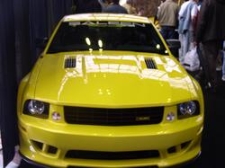 Another pauliebones 2003 Ford Mustang post... - 648741