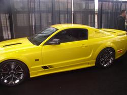 Another pauliebones 2003 Ford Mustang post... - 648742
