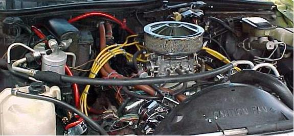 Another SouthernChevy 1986 Chevrolet Caprice post... - 662655