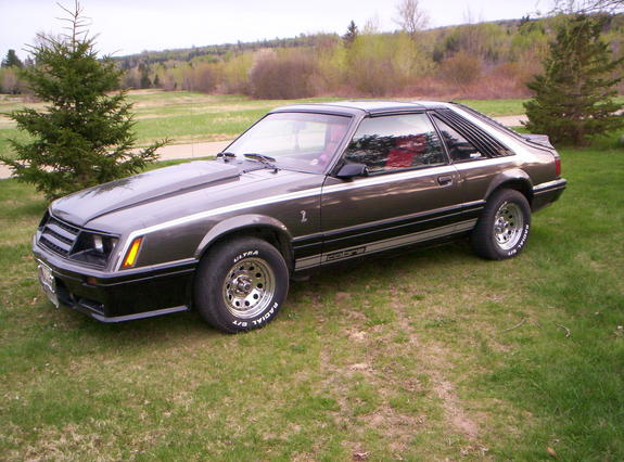 mustangmark 1981 ford mustang specs photos modification. Black Bedroom Furniture Sets. Home Design Ideas