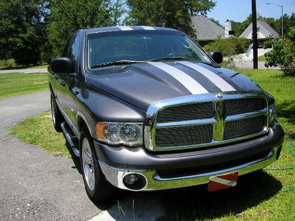 hidrodynamic 2002 dodge ram 1500 regular cab specs photos modification info at cardomain. Black Bedroom Furniture Sets. Home Design Ideas