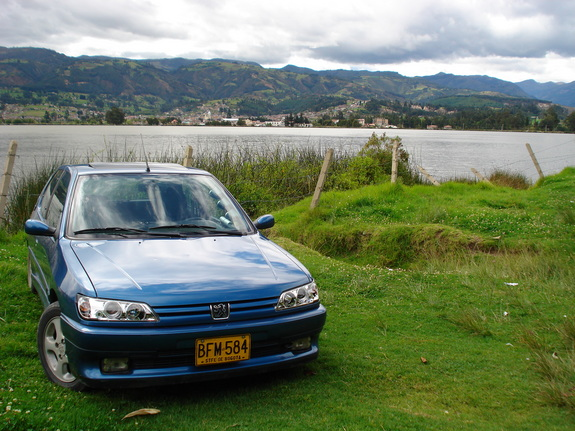 Another andres_apa 1995 Peugeot 306 post... - 6575152