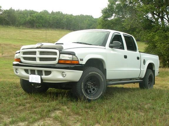Large on 2000 Dodge Dakota Custom