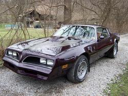 hifooys 1977 Pontiac Trans Am