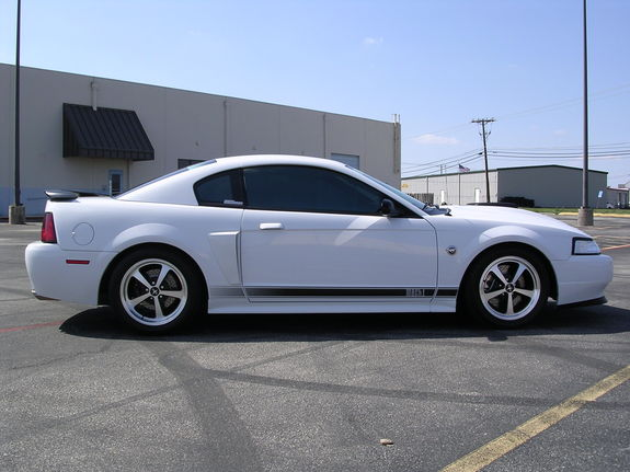 downsouthman1 2004 Ford Mustang 6655269