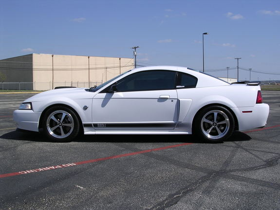 downsouthman1 2004 Ford Mustang 6655270