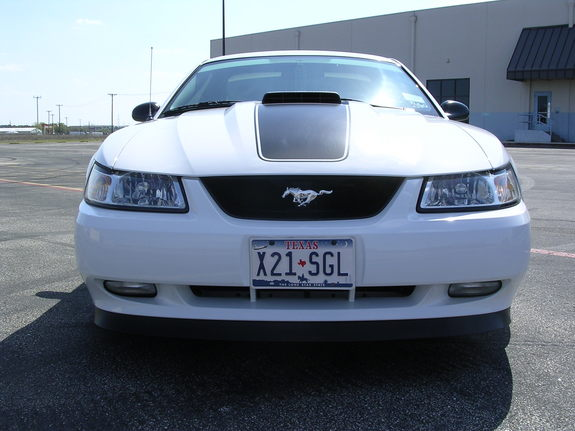 downsouthman1 2004 Ford Mustang