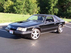 StangSVOs 1986 Ford Mustang