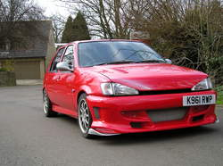 VirusX 1993 Ford Fiesta